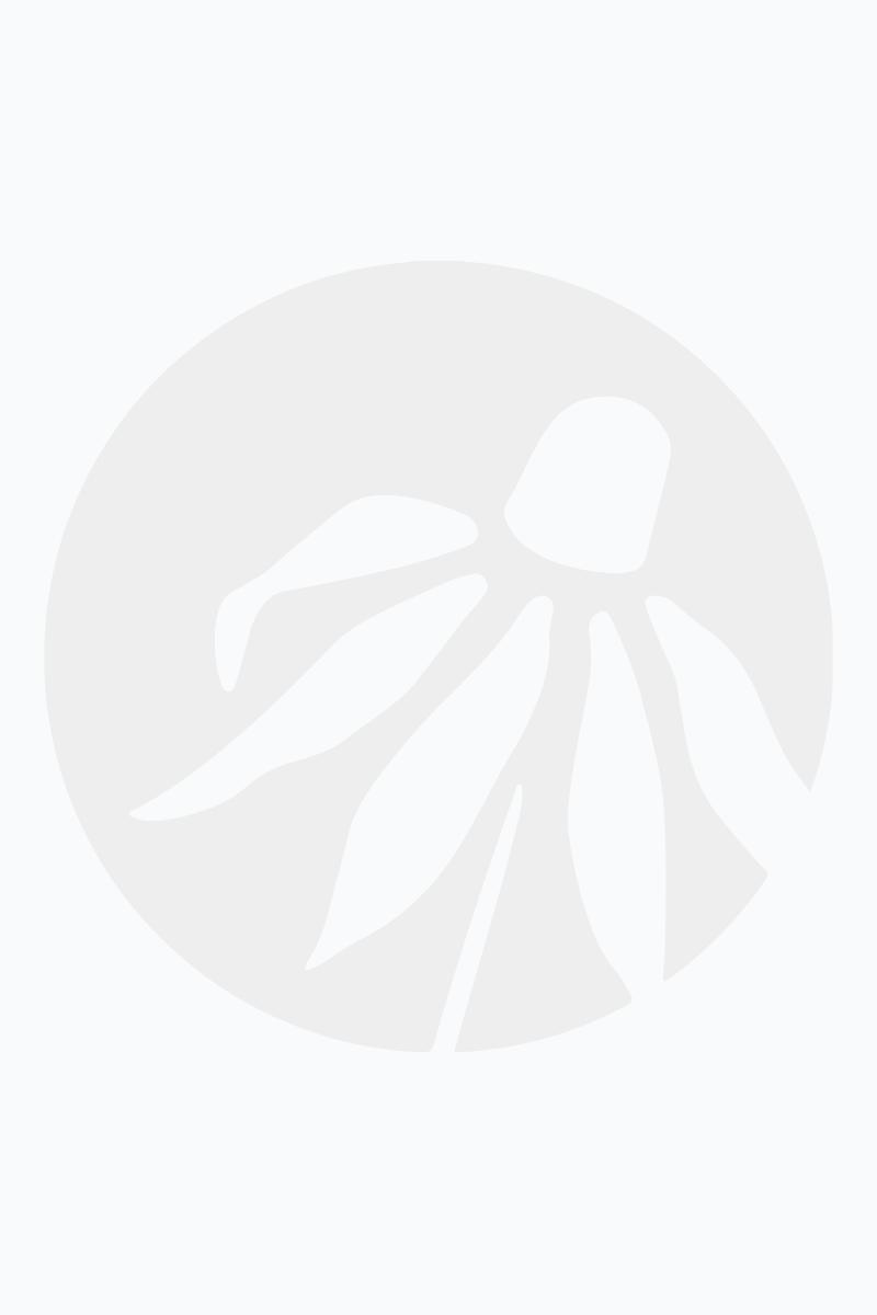 baptisia australis - blue false indigo flowers