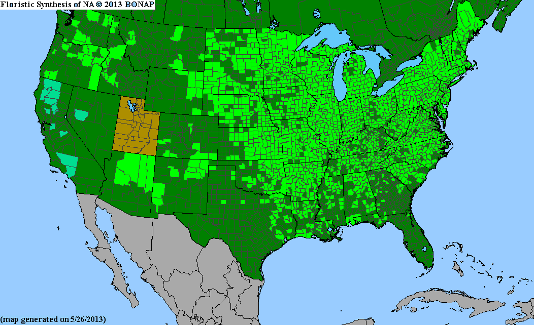 Range Map for Fox Sedge