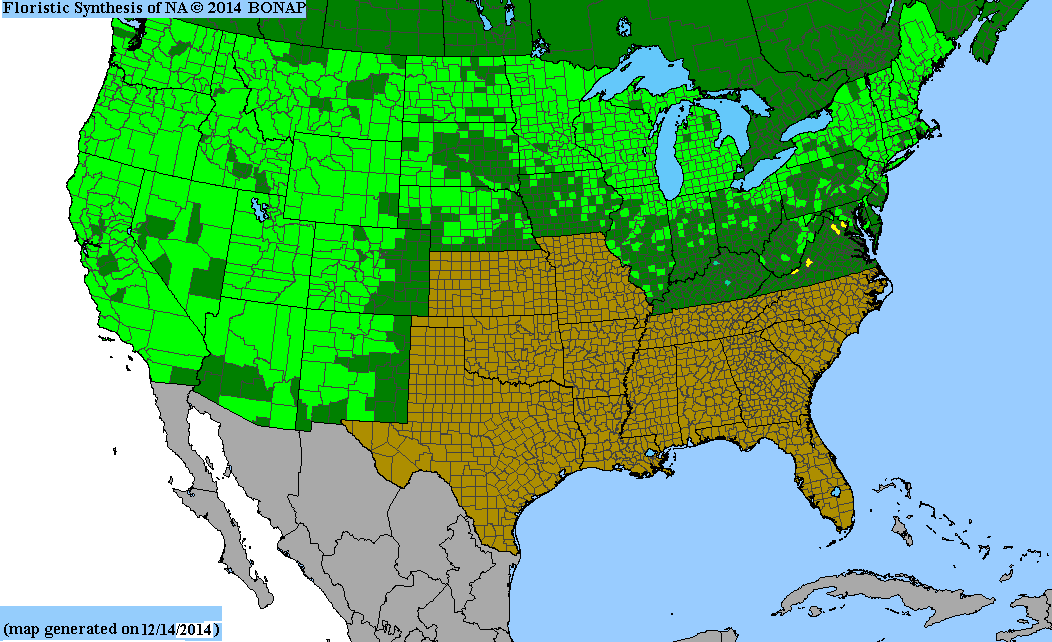 Range Map for Red Twig Dogwood