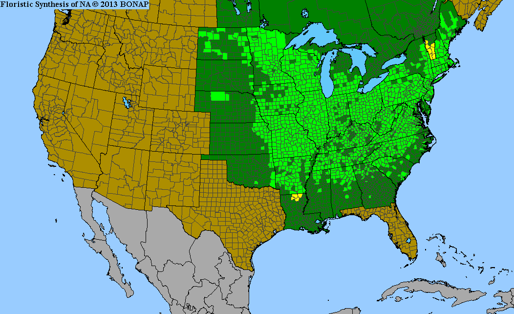 Range Map for American Hazelnut