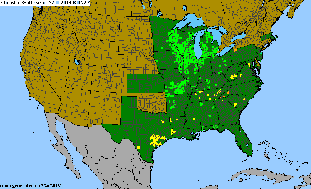 Range Map for Western Sunflower