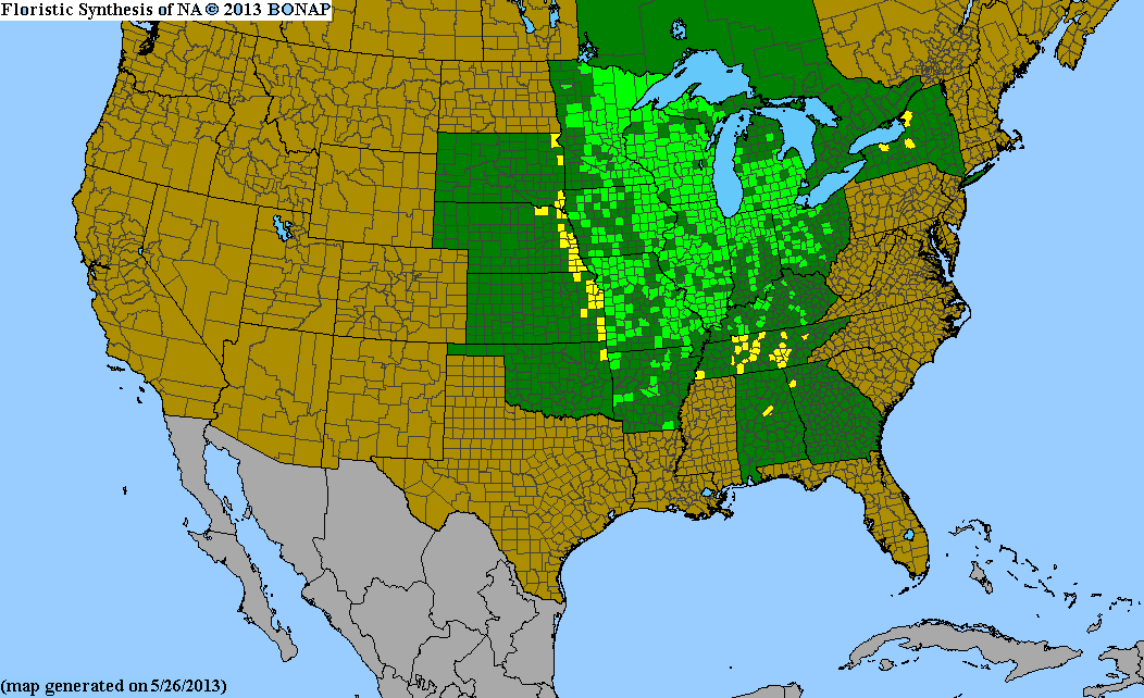 Range Map for Michigan Lily