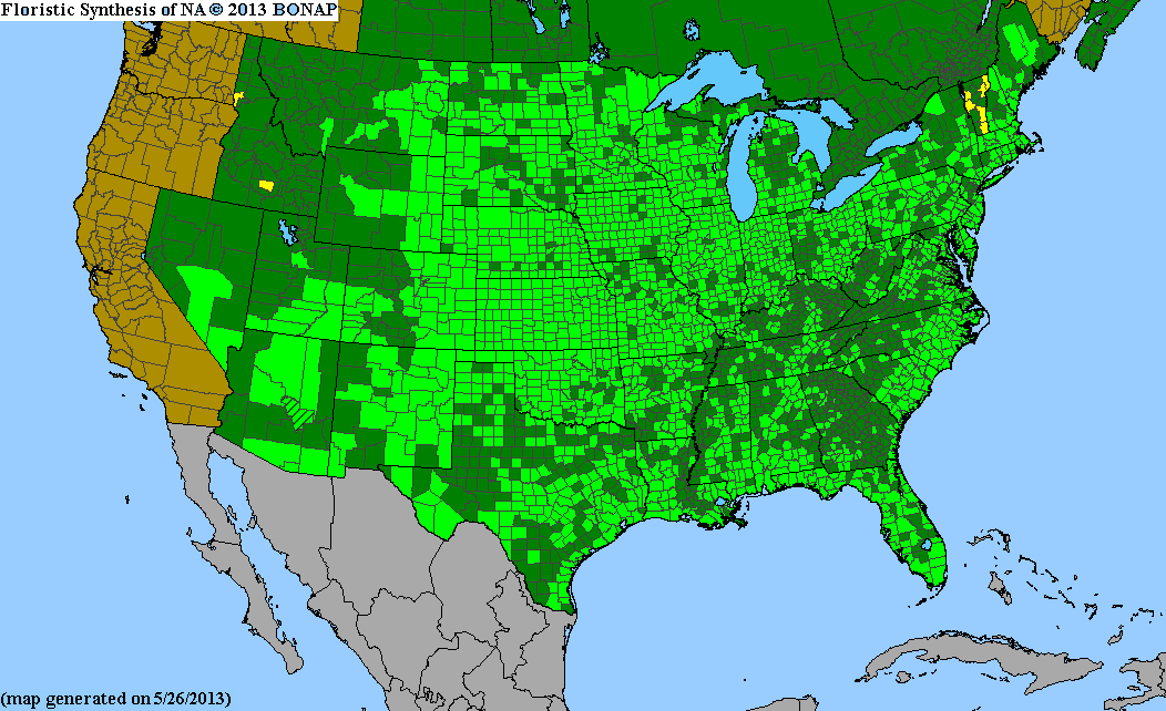 Range Map for Switchgrass