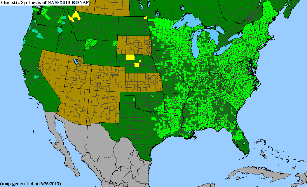 Range Map for Woolgrass