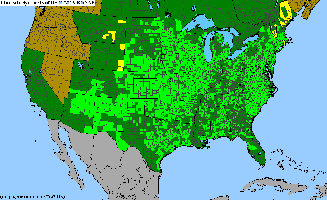 Range Map for Indiangrass