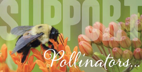 pollinator support kit