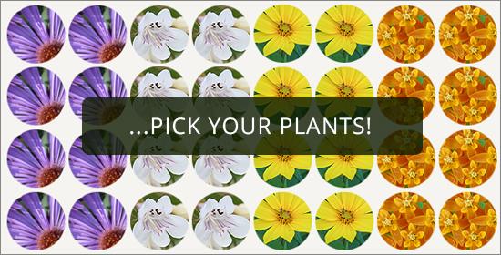 pollinator kit